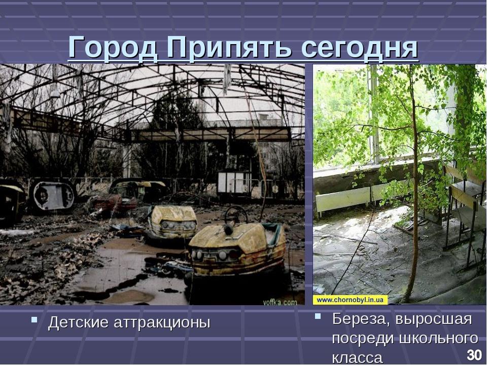 Город Припять сегодня Детские аттракционы Береза, выросшая посреди школьного...