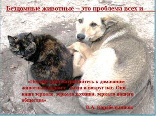 «Почаще присматривайтесь к домашним животным рядом с нами и вокруг нас.Они