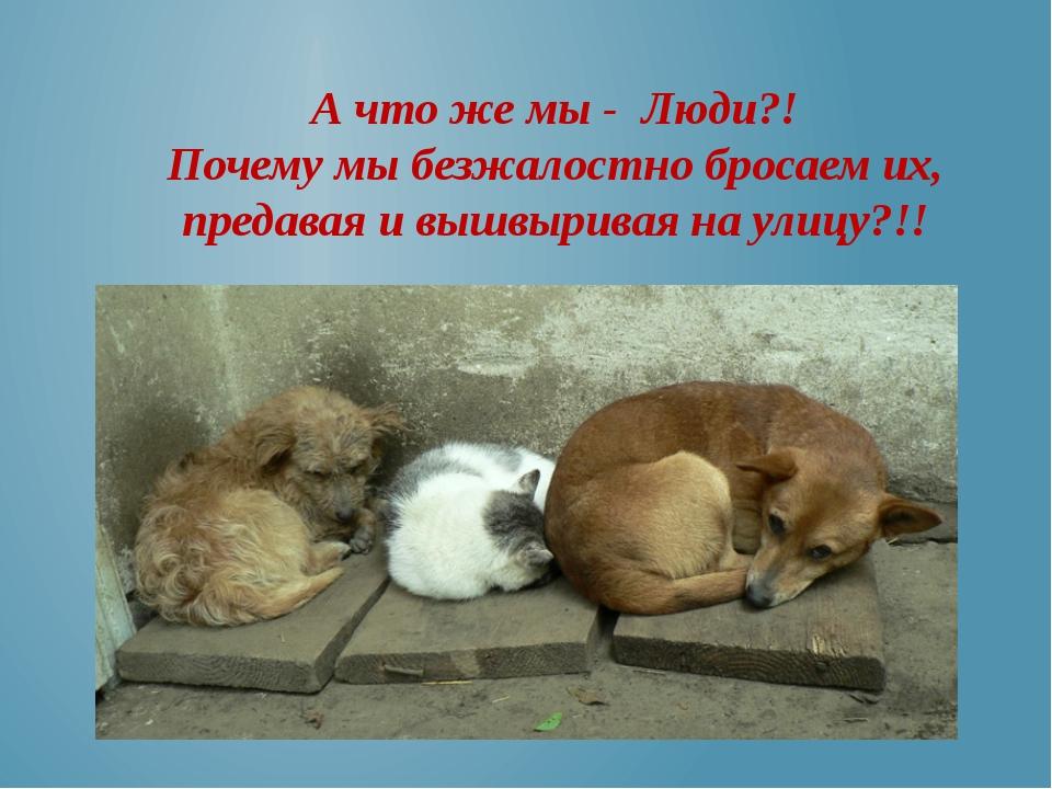 А что же мы - Люди?! Почему мы безжалостно бросаем их, предавая и вышвыривая...