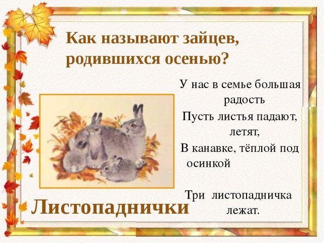 Как называют зайцев, родившихся осенью? Листопаднички У нас в семье большая р...