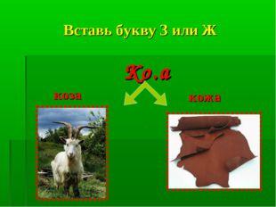 Вставь букву З или Ж Ко.а коза кожа