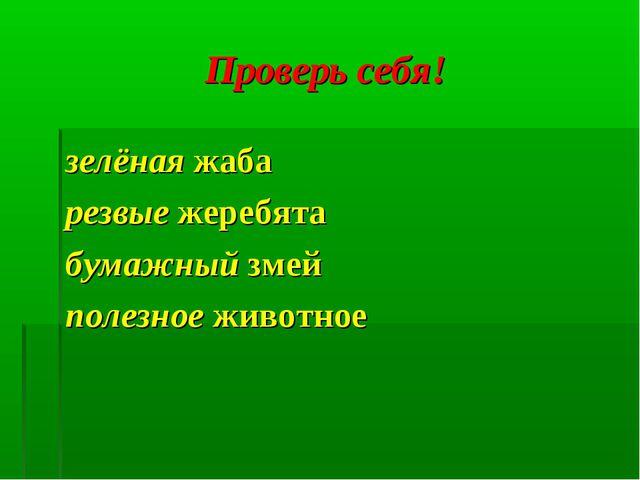 Проверь себя! зелёная жаба резвые жеребята бумажный змей полезное животное