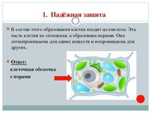 1. Надёжная защита В состав этого образования клетки входит целлюлоза. Эта ча