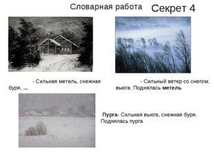 ВЬЮ́ГА- Сильная метель, снежная буря.... МЕТЕ́ЛЬ- Сильный ветер со снегом;