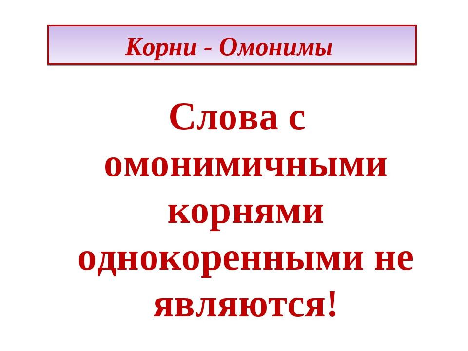 Корни - Омонимы Слова с омонимичными корнями однокоренными не являются!