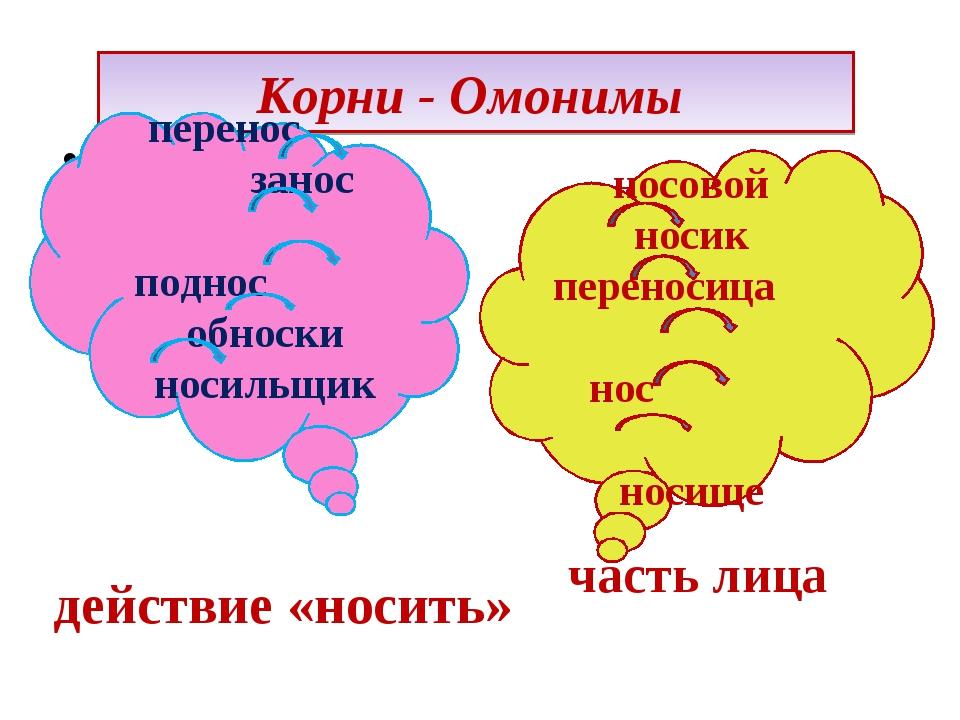 Корни - Омонимы действие «носить» часть лица перенос занос поднос обноски нос...