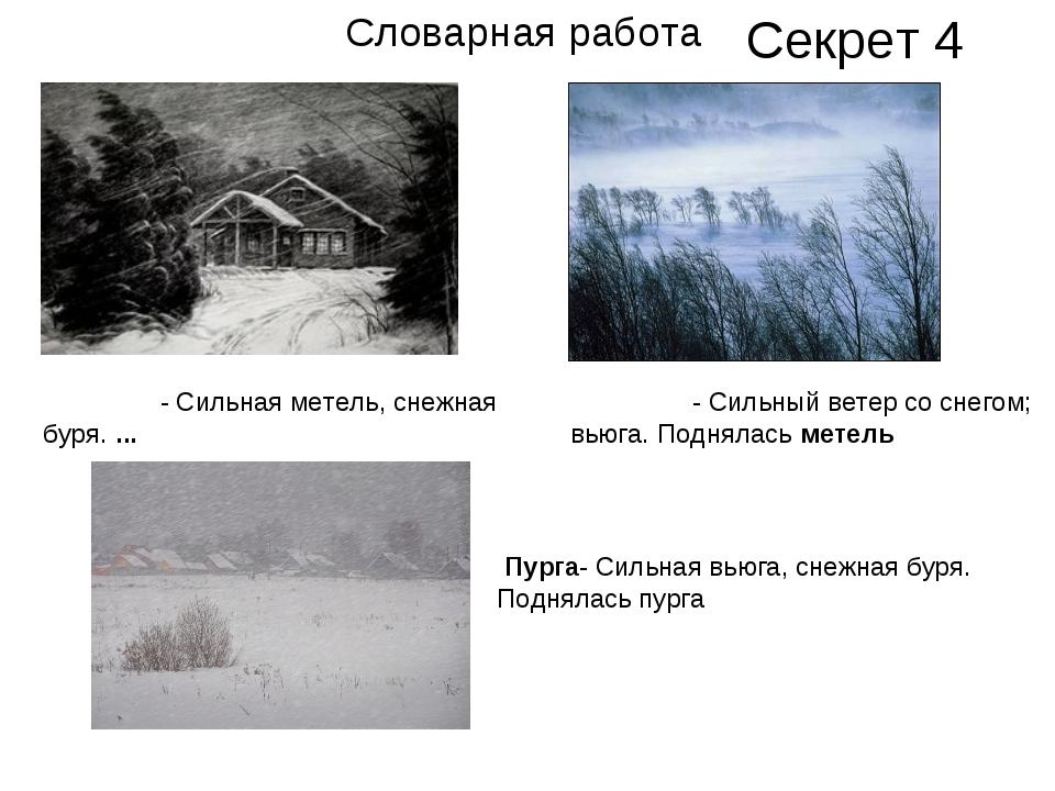 ВЬЮ́ГА- Сильная метель, снежная буря.... МЕТЕ́ЛЬ- Сильный ветер со снегом;...