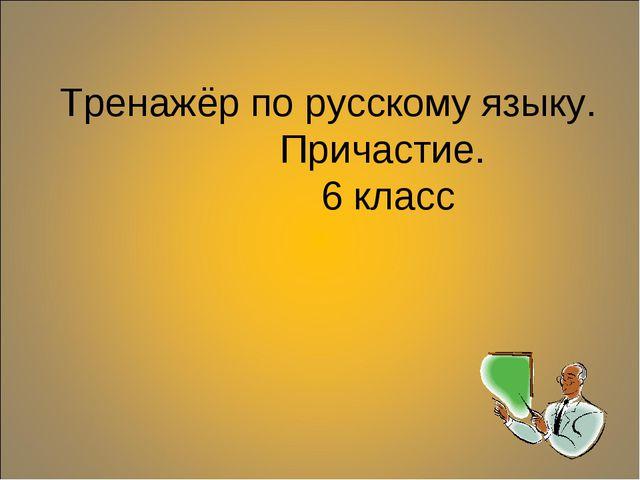 Тренажёр по русскому языку. Причастие. 6 класс