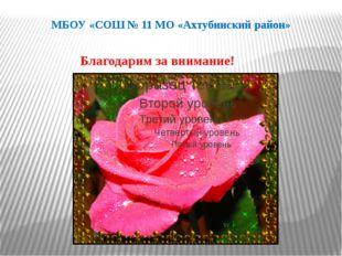 МБОУ «СОШ № 11 МО «Ахтубинский район» Благодарим за внимание!