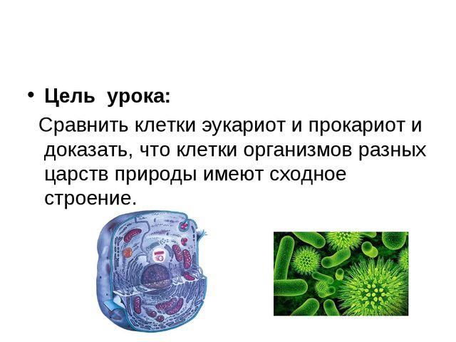 Цель урока: Сравнить клетки эукариот и прокариот и доказать, что клетки орган...