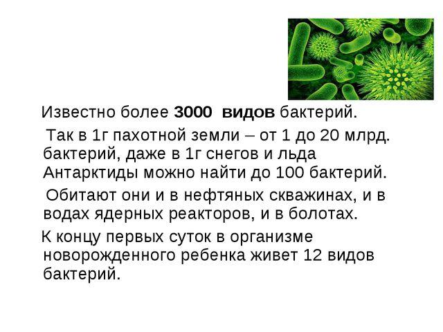Известно более 3000 видов бактерий. Так в 1г пахотной земли – от 1 до 20 млр...