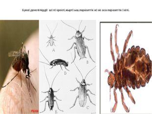 Бунақденелілердің шөпқоректі,жыртқыш,паразиттік және аса паразиттік өкілі.