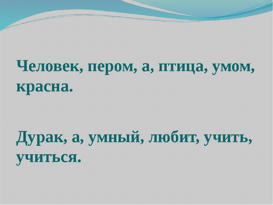 Человек, пером, а, птица, умом, красна. Дурак, а, умный, любит, учить, учить...
