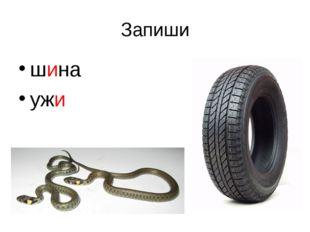 Запиши шина ужи