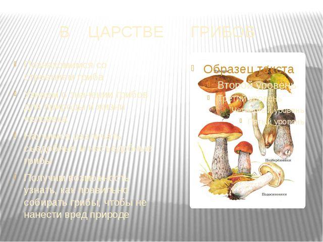 В ЦАРСТВЕ ГРИБОВ Познакомимся со строением гриба Узнаем о значении грибов для...
