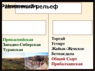 Прикаспийская Западно-Сибирская Туранская Торгай Устирт Жайык-Жемское Бетпакд