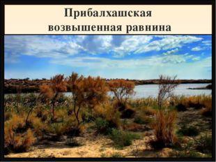 Прибалхашская возвышенная равнина Название Высота, метры Фундамент, складчато