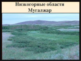 Низкогорные области Мугалжар Название Высота, метры Фундамент, складчатость Г
