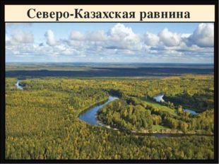 Северо-Казахская равнина Название Высота, метры Фундамент, складчатость Горны