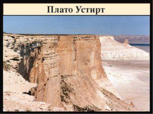 Плато Устирт Название Высота, метры Фундамент,складчатость Горные породы Рель