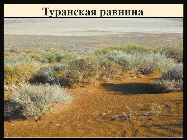 Туранская равнина Название Высота, метры Фундамент, складчатость Горные пород...