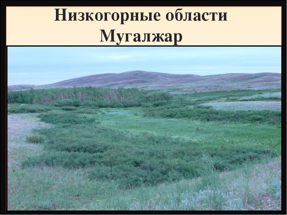 Низкогорные области Мугалжар Название Высота, метры Фундамент, складчатость Г...