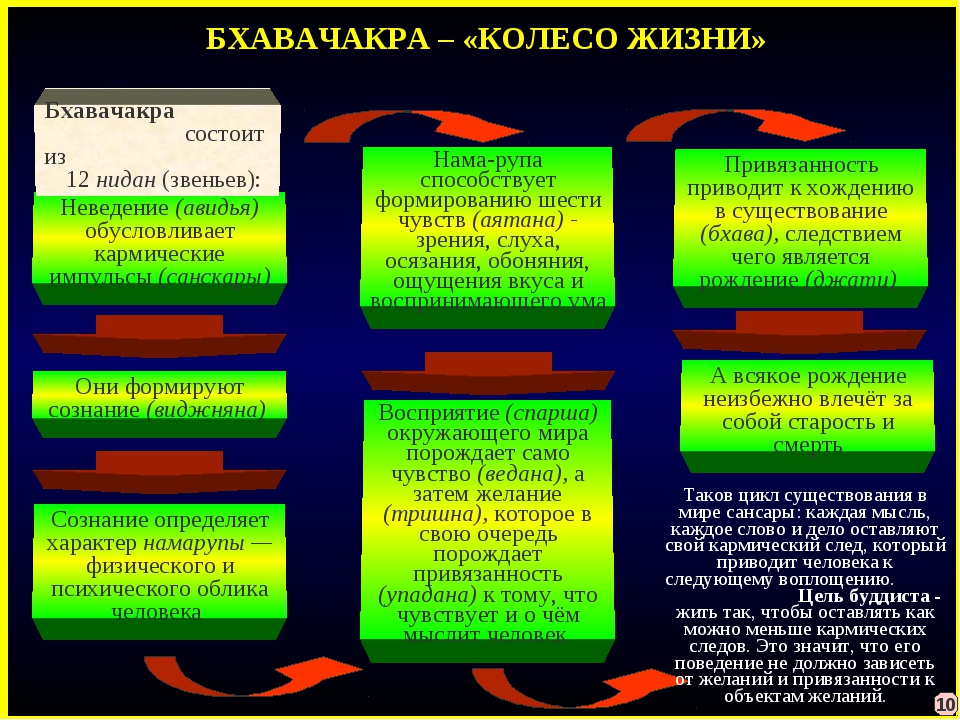БХАВАЧАКРА – «КОЛЕСО ЖИЗНИ» Неведение (авидья) обусловливает кармические импу...