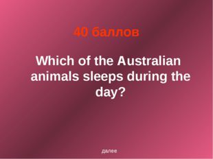 40 баллов Which of the Australian animals sleeps during the day? далее