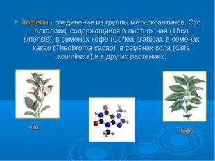Кофеин - соединение из группы метилксантинов. Это алкалоид, содержащийся в ли