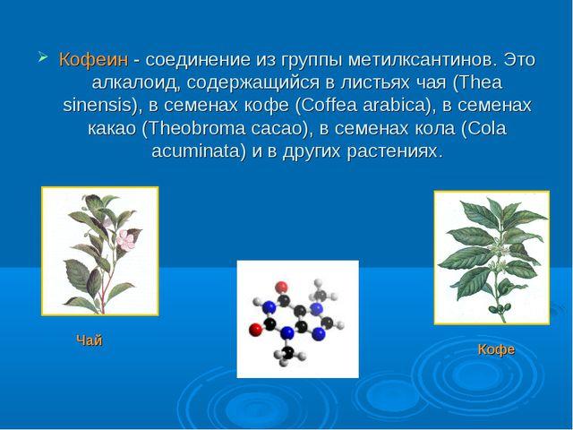 Кофеин - соединение из группы метилксантинов. Это алкалоид, содержащийся в ли...