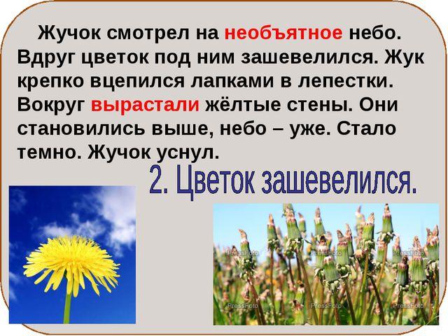 Жучок смотрел на необъятное небо. Вдруг цветок под ним зашевелился. Жук креп...