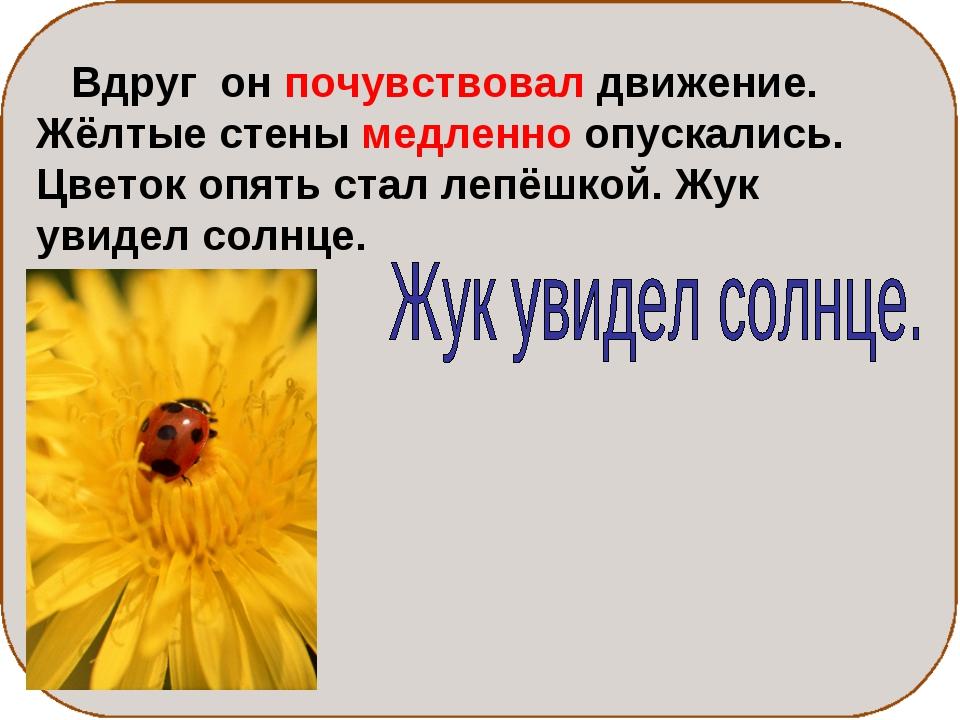 Вдруг он почувствовал движение. Жёлтые стены медленно опускались. Цветок опя...