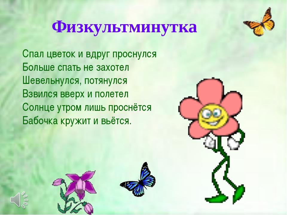 Спал цветок и вдруг проснулся Больше спать не захотел Шевельнулся, потянулся...
