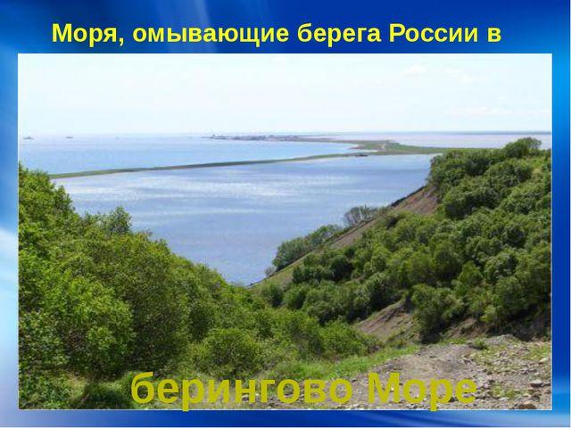 Моря, омывающие берега России в Азии: берингово Море