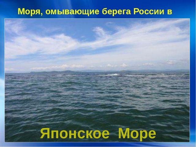 Моря, омывающие берега России в Азии: Японское Море