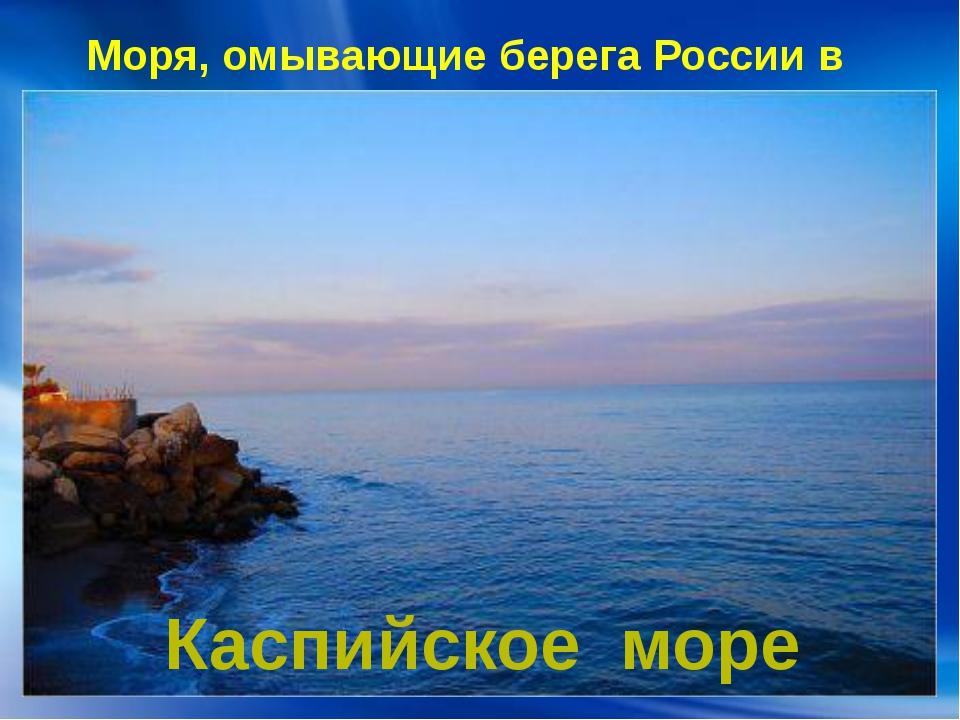 Моря, омывающие берега России в Европе: Каспийское море