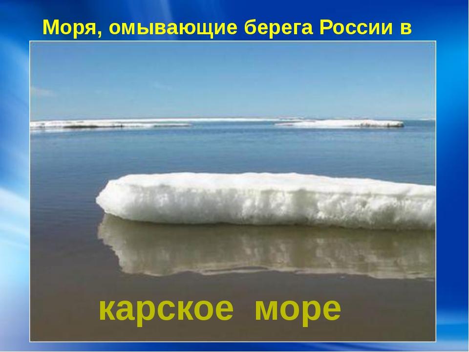 Моря, омывающие берега России в Европе: карское море