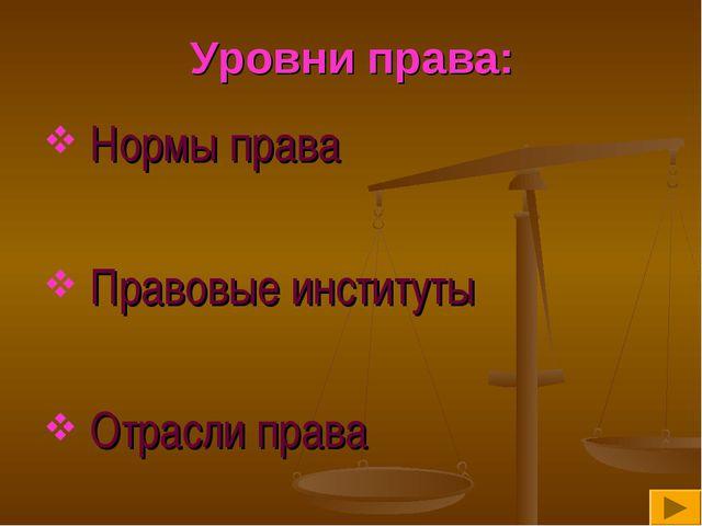 Уровни права: Нормы права Правовые институты Отрасли права