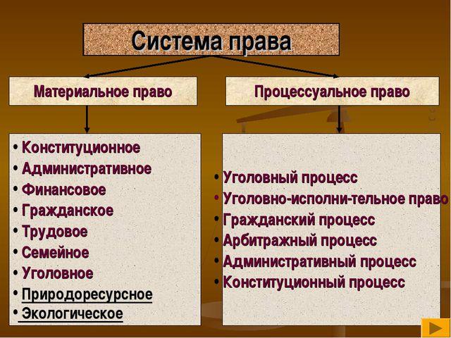 Система права Материальное право Процессуальное право Конституционное Админис...