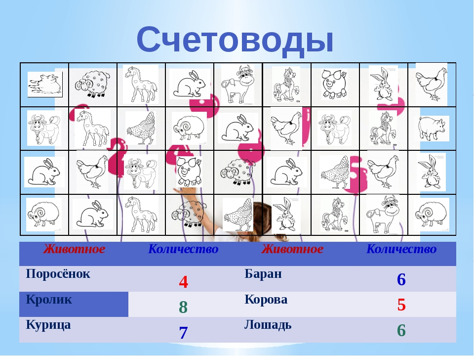 Счетоводы Животное Количество Животное Количество Поросёнок  Баран Кролик...
