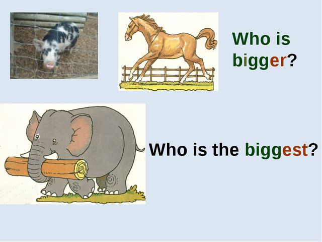 Who is bigger? Who is the biggest?