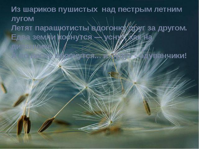 Из шариков пушистых над пестрым летним лугом Летят парашютисты вдогонку друг...