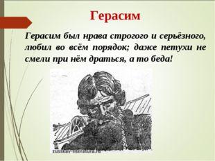 Герасим Герасим был нрава строгого и серьёзного, любил во всём порядок; даже