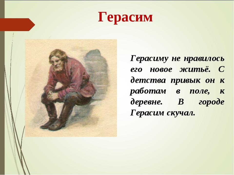 Герасим Герасиму не нравилось его новое житьё. С детства привык он к работам...