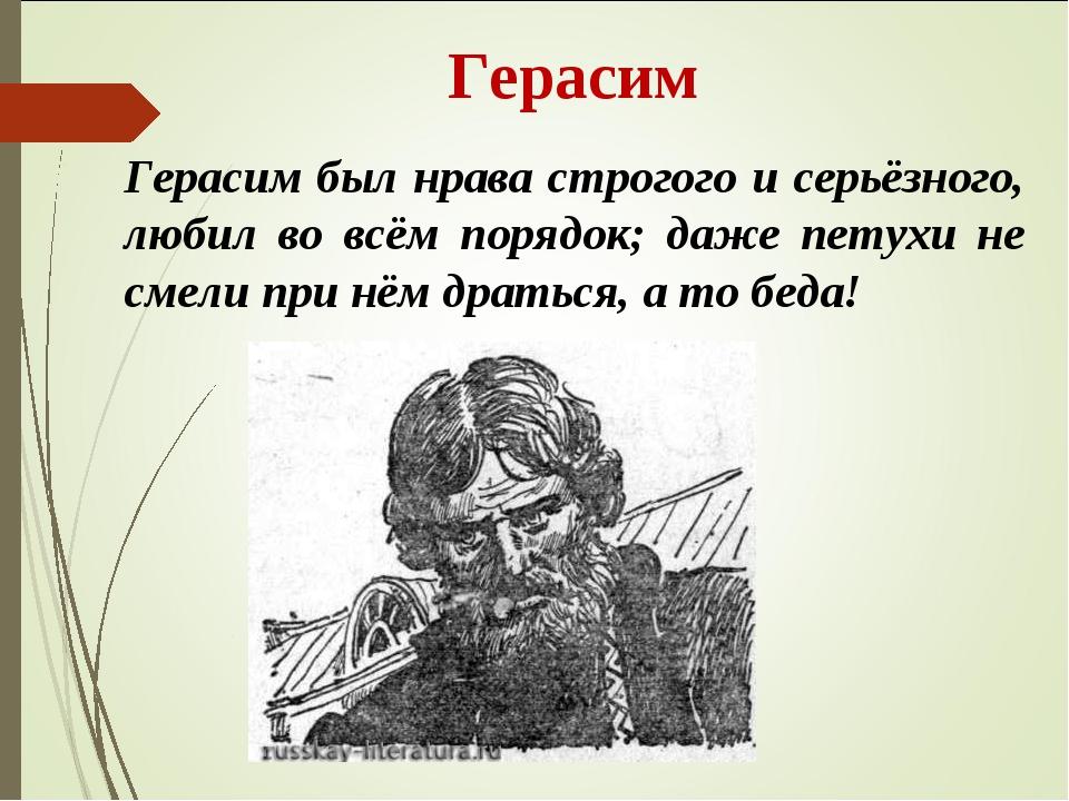 Герасим Герасим был нрава строгого и серьёзного, любил во всём порядок; даже...