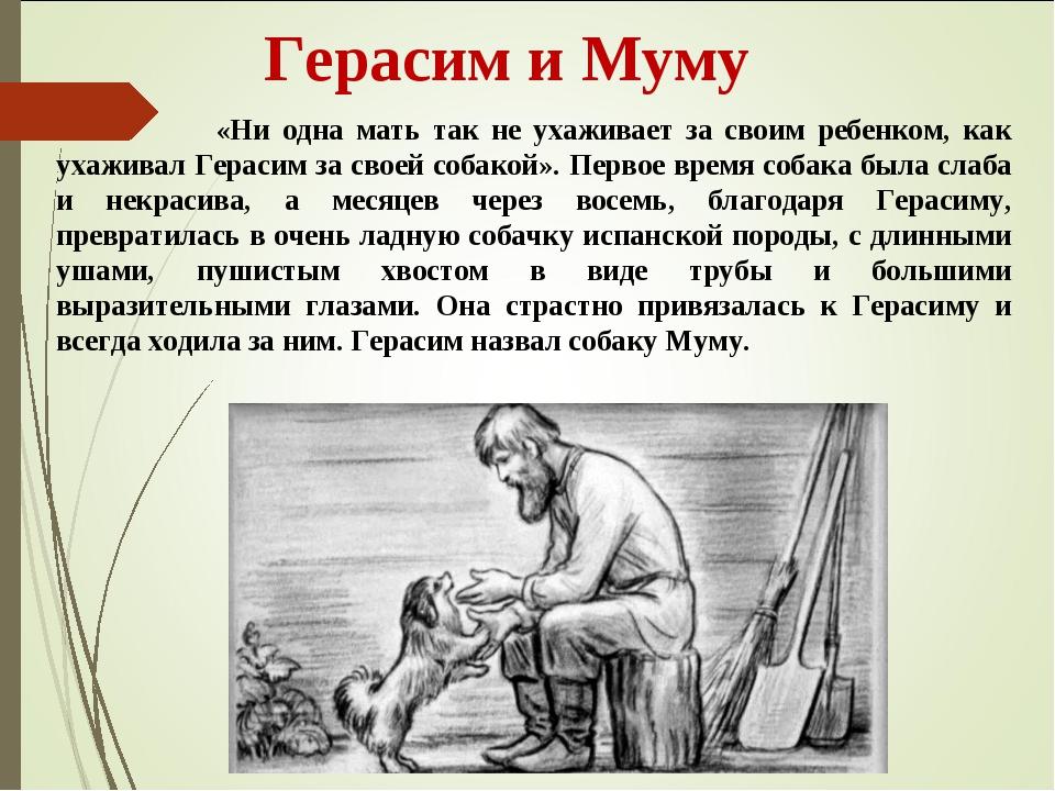 Герасим и Муму «Ни одна мать так не ухаживает за своим ребенком, как ухажива...