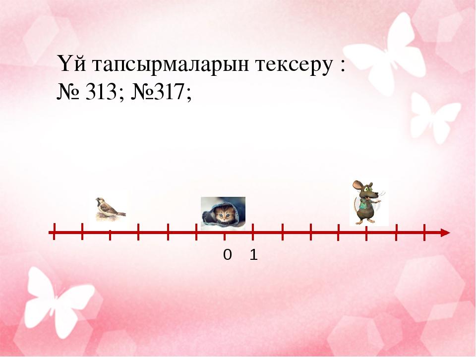 Үй тапсырмаларын тексеру : № 313; №317; 0 1