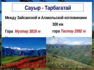 Сауыр - Тарбагатай Между Зайсанской и Алакольской котловинами Гора Музтау 381