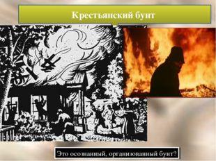 Крестьянский бунт Это осознанный, организованный бунт?