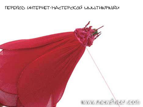 http://thinpin.ru/images/newsheer_rose7.jpg
